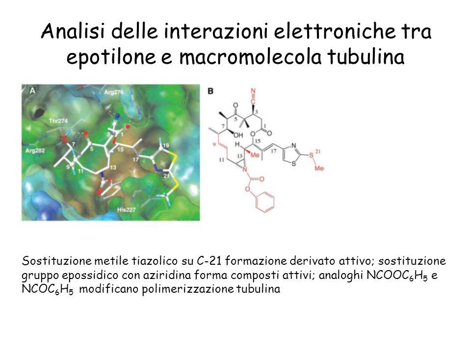 Analisi delle interazioni elettroniche tra epotilone e macromolecola tubulina