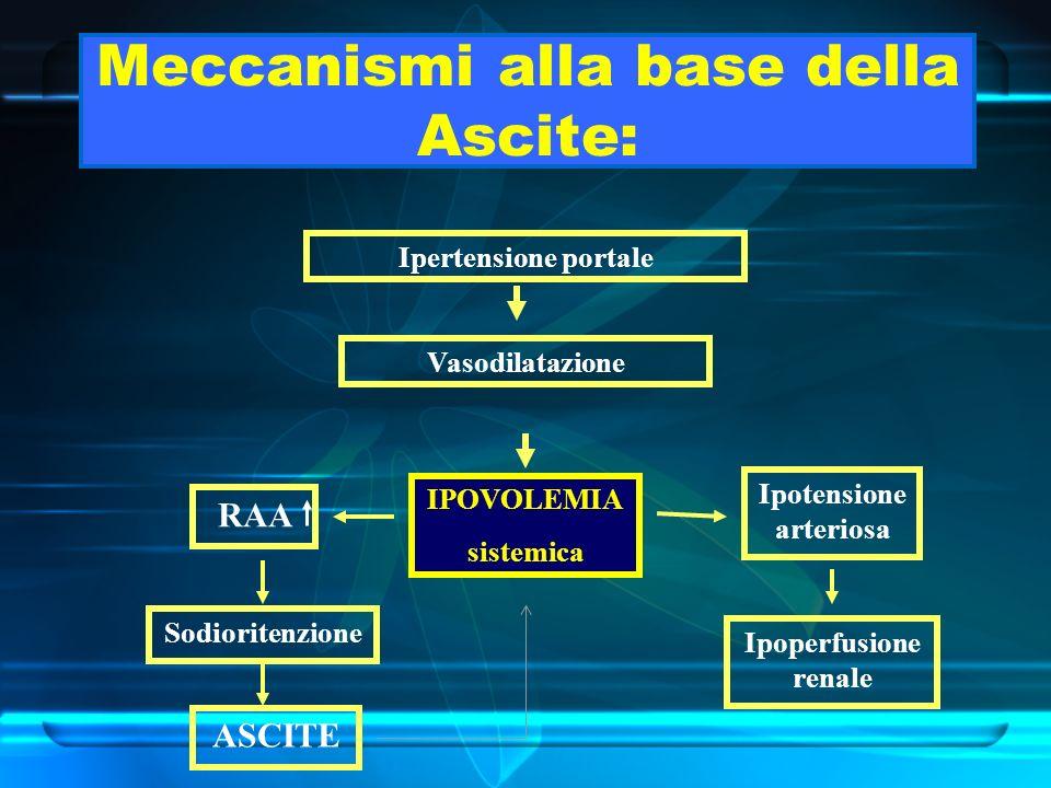Meccanismi alla base della Ascite: