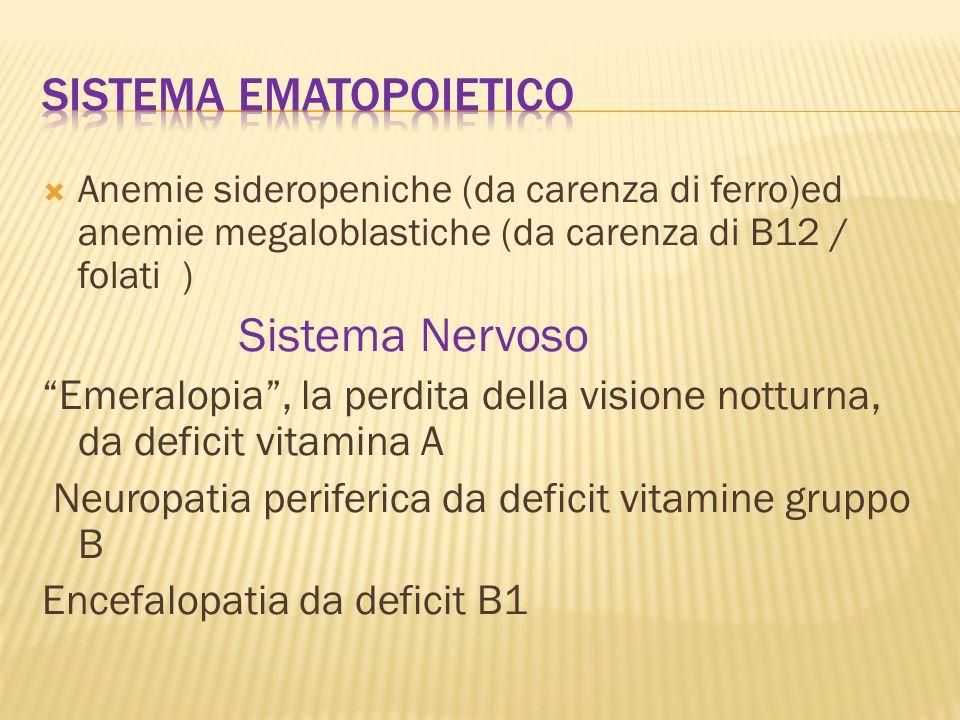 Sistema ematopoietico