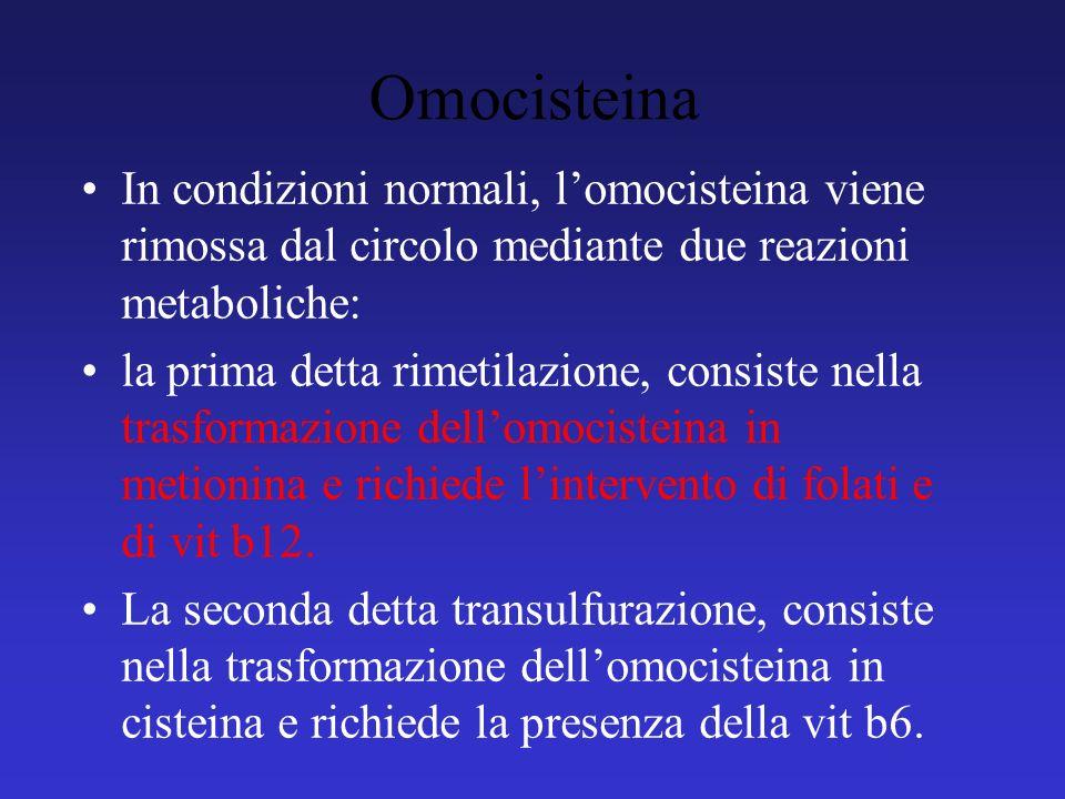 Omocisteina In condizioni normali, l'omocisteina viene rimossa dal circolo mediante due reazioni metaboliche: