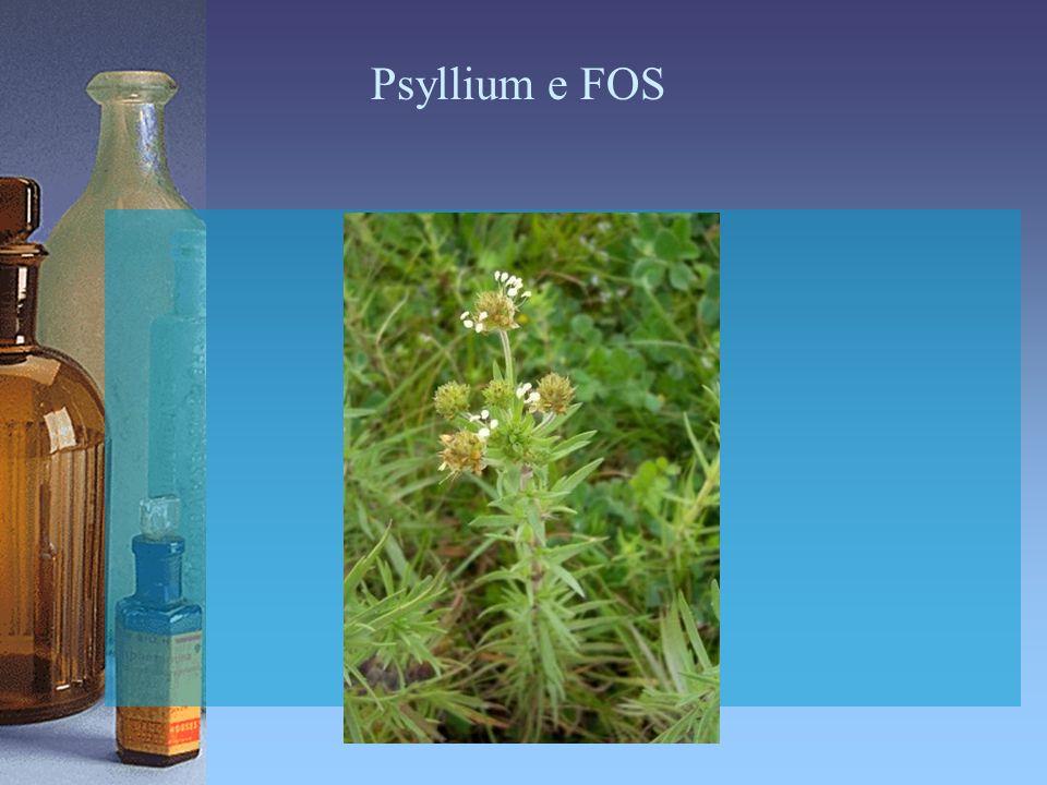 Psyllium e FOS