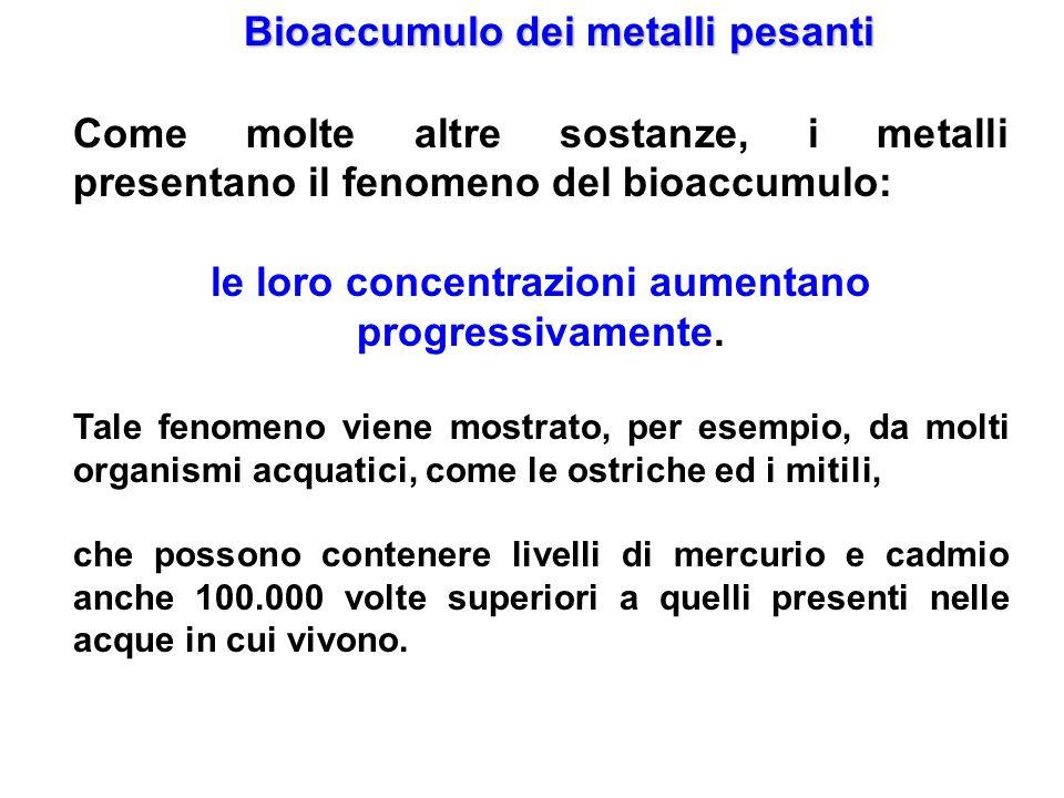 Bioaccumulo dei metalli pesanti