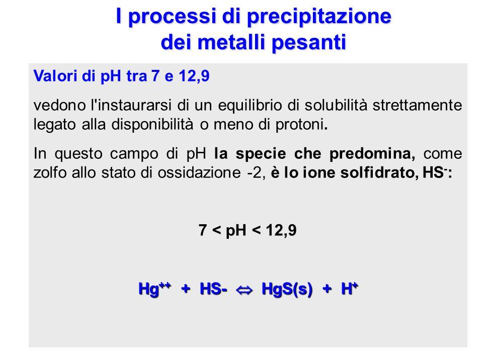 I processi di precipitazione