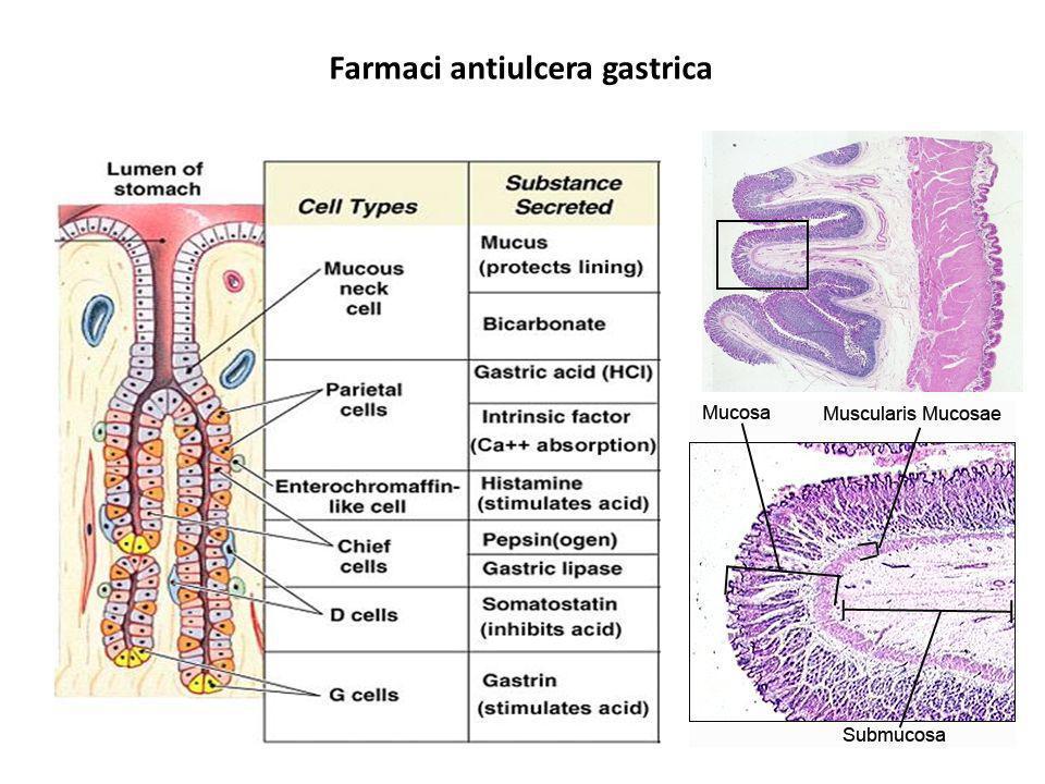 Farmaci antiulcera gastrica