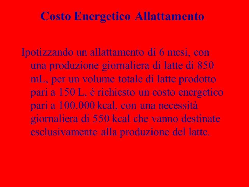 Costo Energetico Allattamento