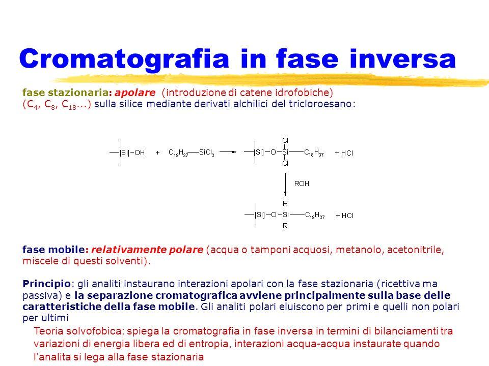 Cromatografia in fase inversa