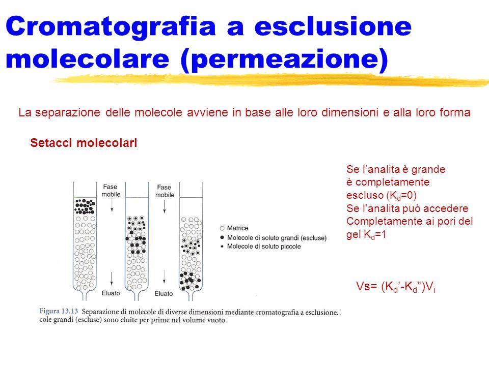 Cromatografia a esclusione molecolare (permeazione)