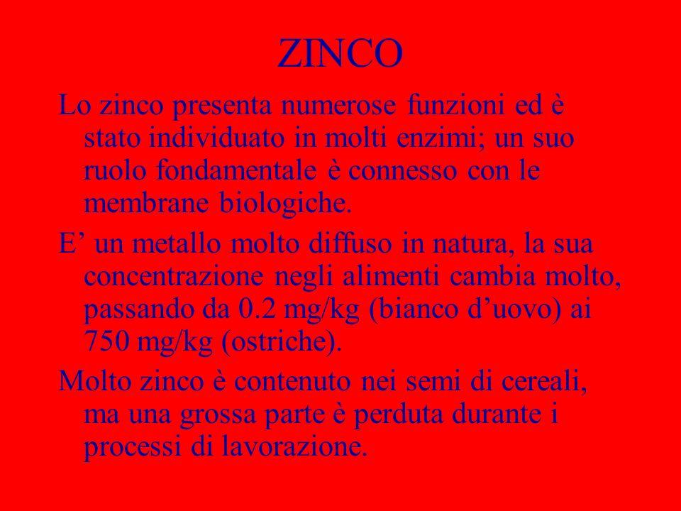 ZINCO Lo zinco presenta numerose funzioni ed è stato individuato in molti enzimi; un suo ruolo fondamentale è connesso con le membrane biologiche.
