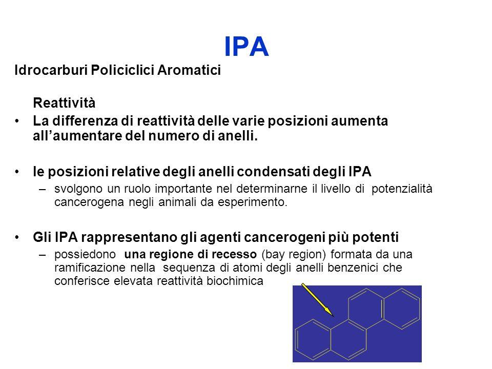 IPA Idrocarburi Policiclici Aromatici Reattività
