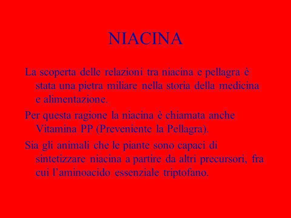 NIACINA La scoperta delle relazioni tra niacina e pellagra è stata una pietra miliare nella storia della medicina e alimentazione.