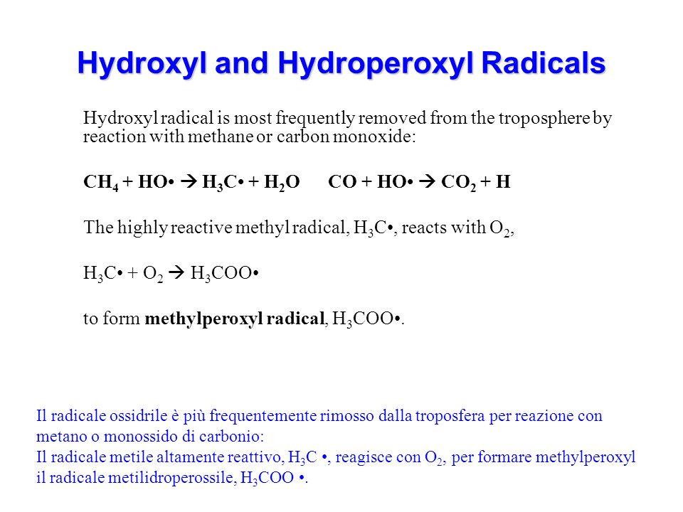 Hydroxyl and Hydroperoxyl Radicals