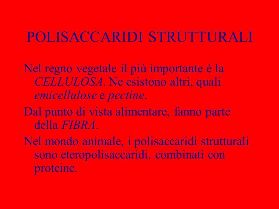 POLISACCARIDI STRUTTURALI