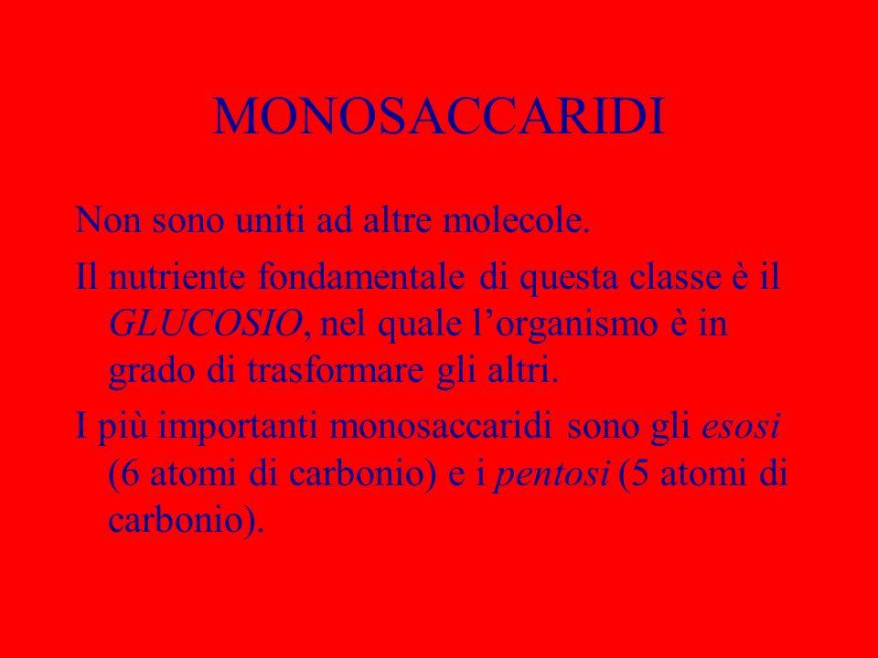 MONOSACCARIDI Non sono uniti ad altre molecole.