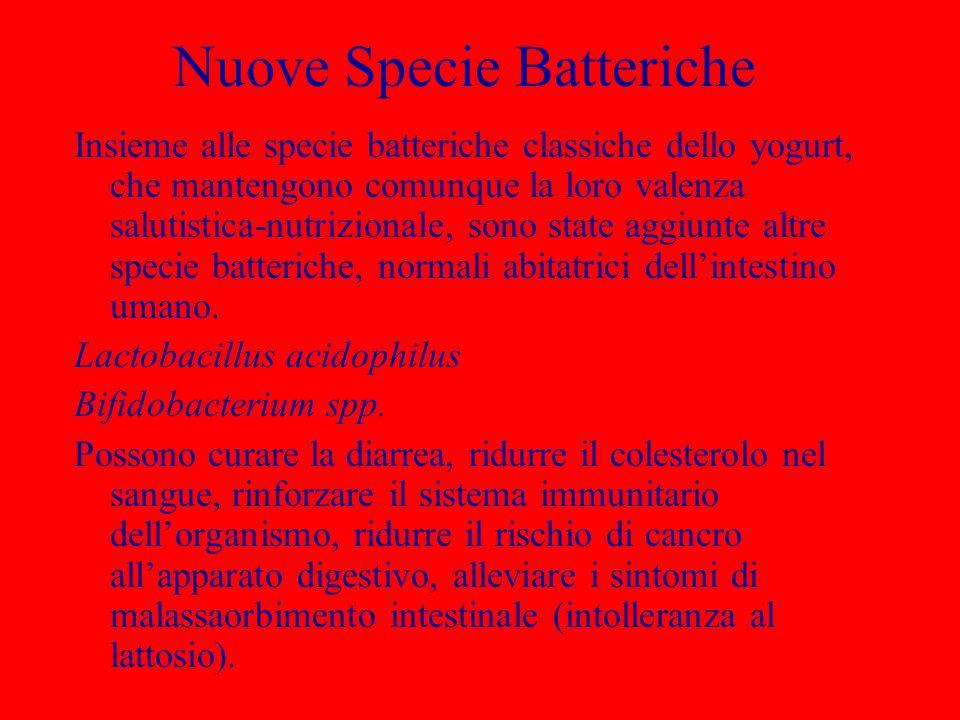 Nuove Specie Batteriche