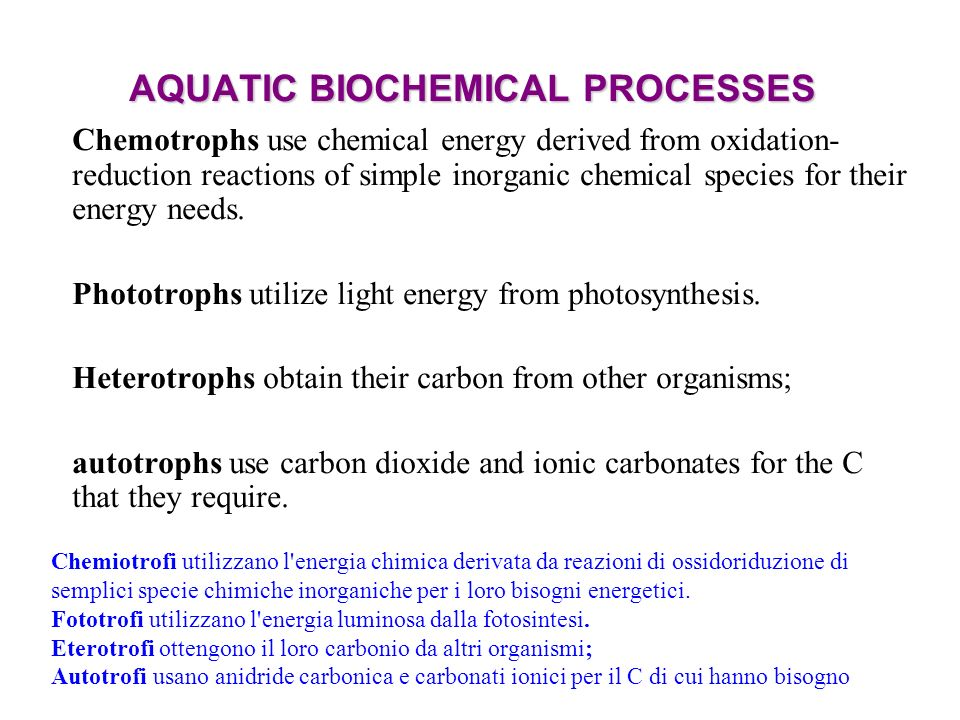 AQUATIC BIOCHEMICAL PROCESSES