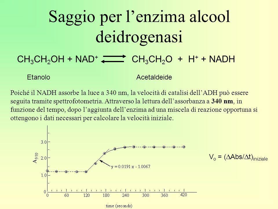 Saggio per l'enzima alcool deidrogenasi