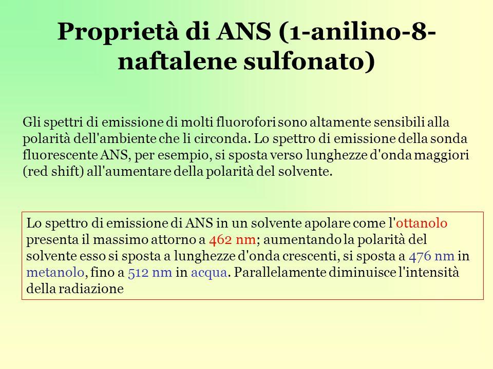 Proprietà di ANS (1-anilino-8-naftalene sulfonato)