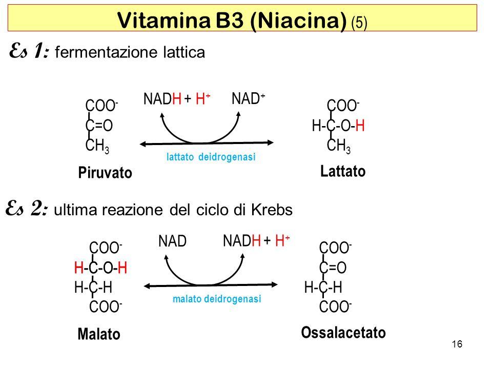Vitamina B3 (Niacina) (5)