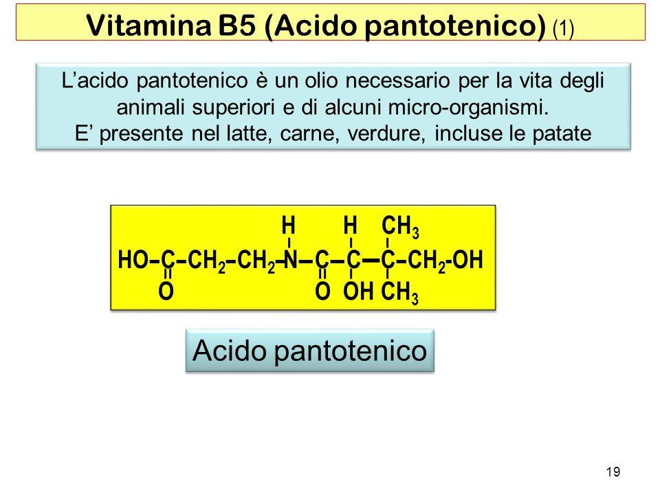 Vitamina B5 (Acido pantotenico) (1)