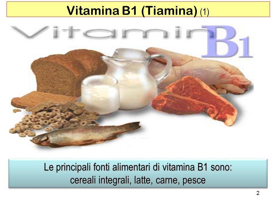 Vitamina B1 (Tiamina) (1)
