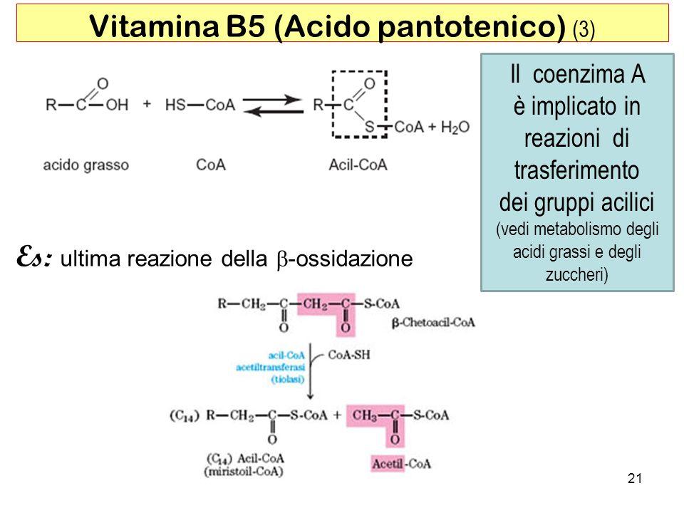 Vitamina B5 (Acido pantotenico) (3)