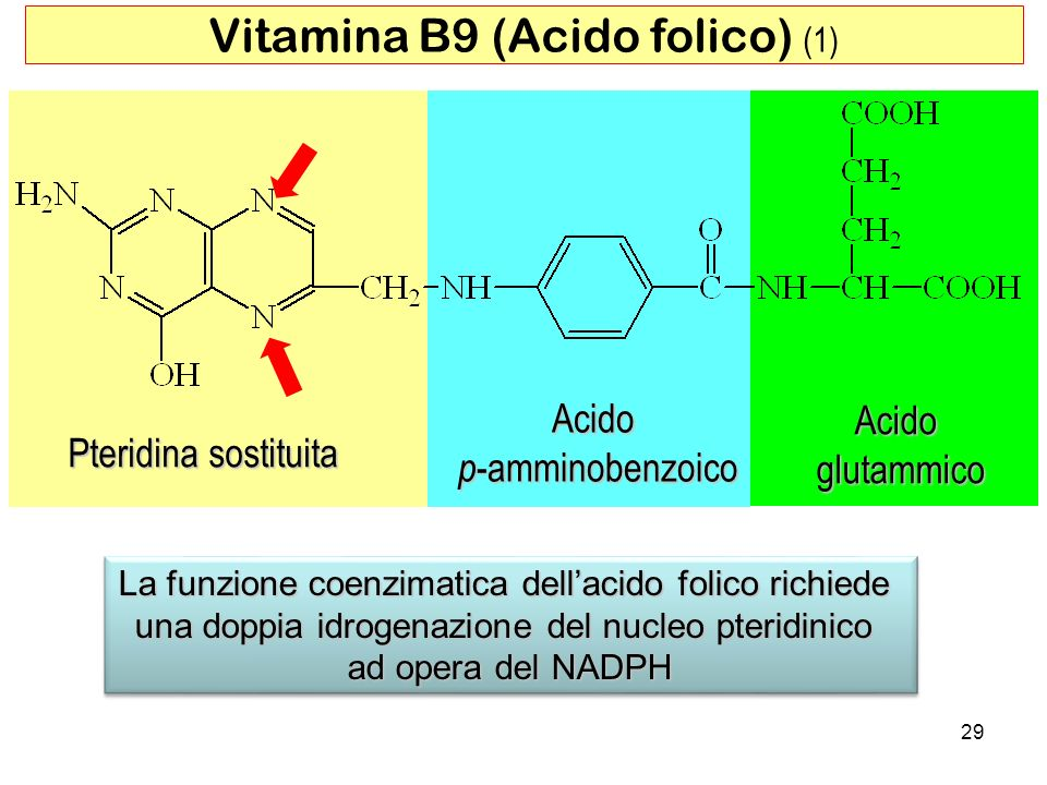 Vitamina B9 (Acido folico) (1)