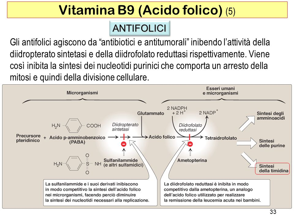 Vitamina B9 (Acido folico) (5)
