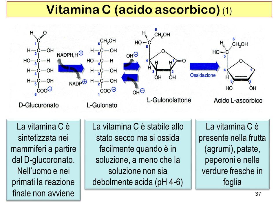 Vitamina C (acido ascorbico) (1)