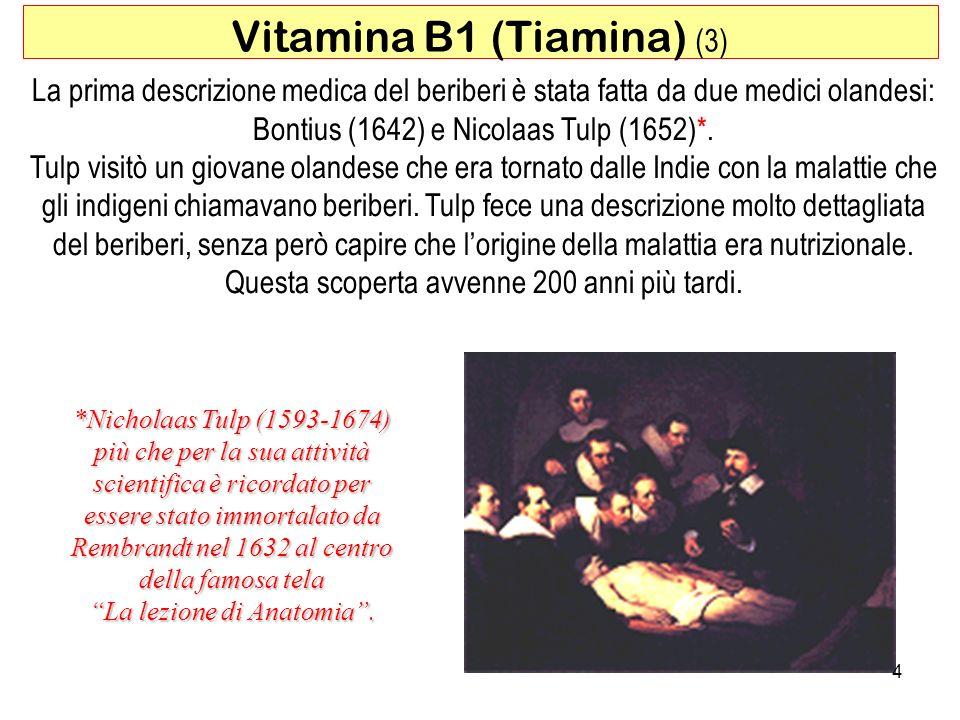Vitamina B1 (Tiamina) (3)