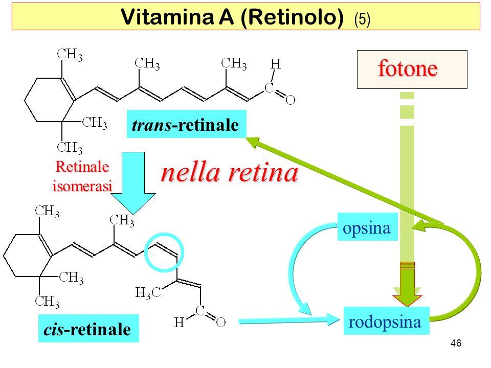 Vitamina A (Retinolo) (5)