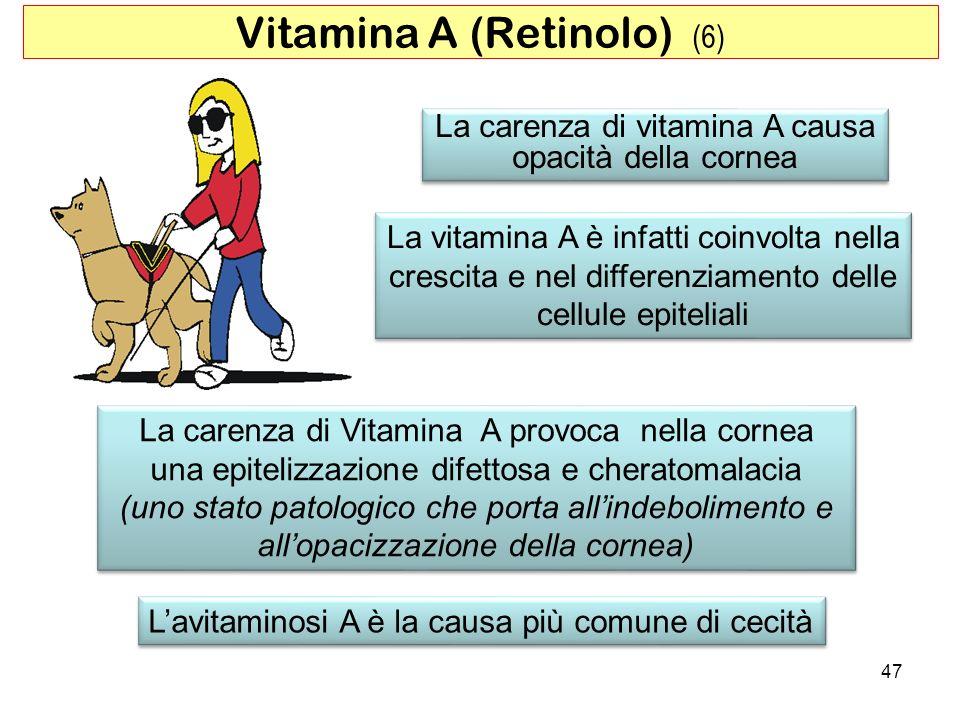 Vitamina A (Retinolo) (6)