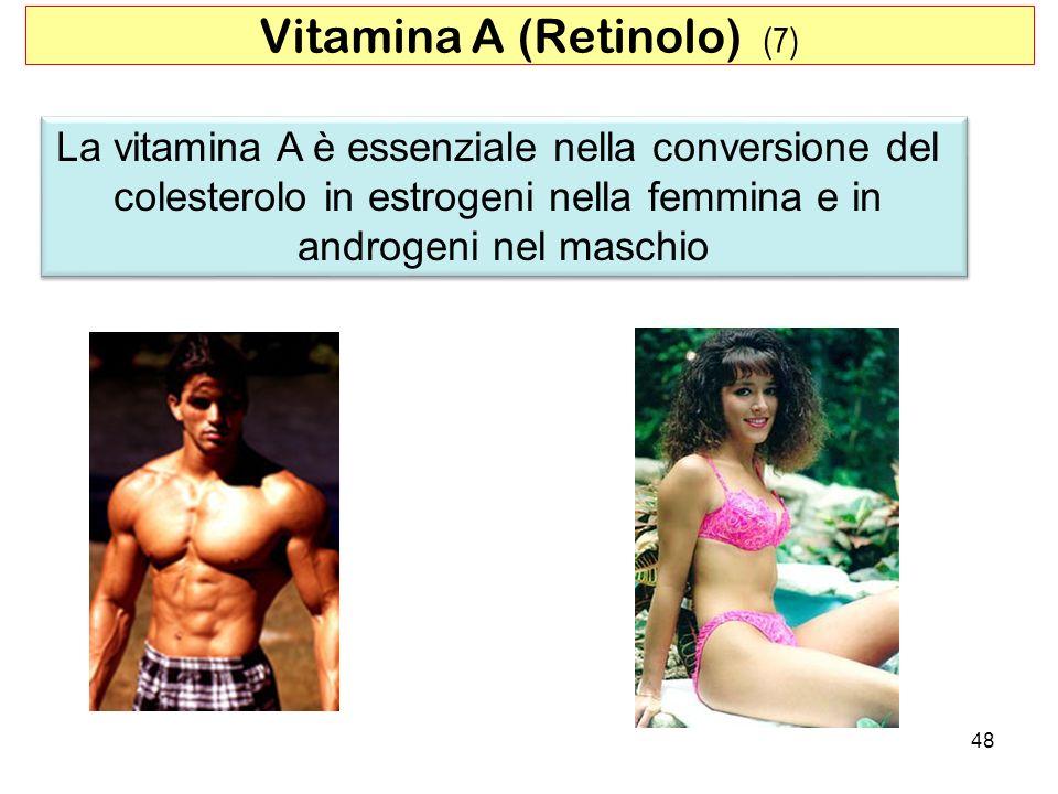 Vitamina A (Retinolo) (7)