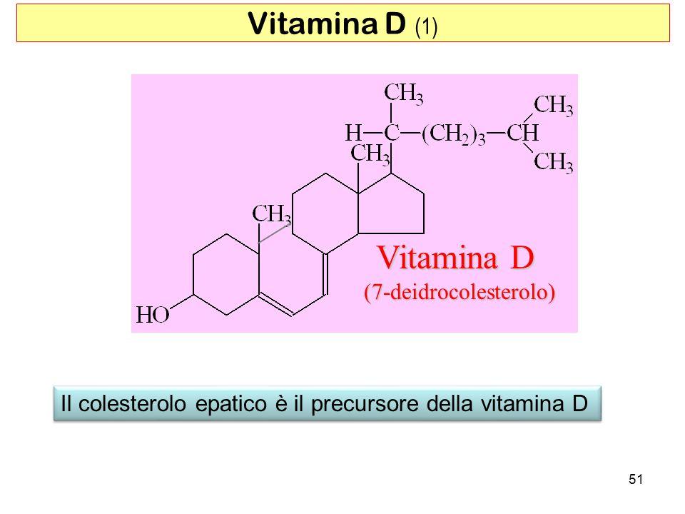 (7-deidrocolesterolo)