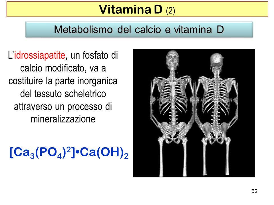 Metabolismo del calcio e vitamina D