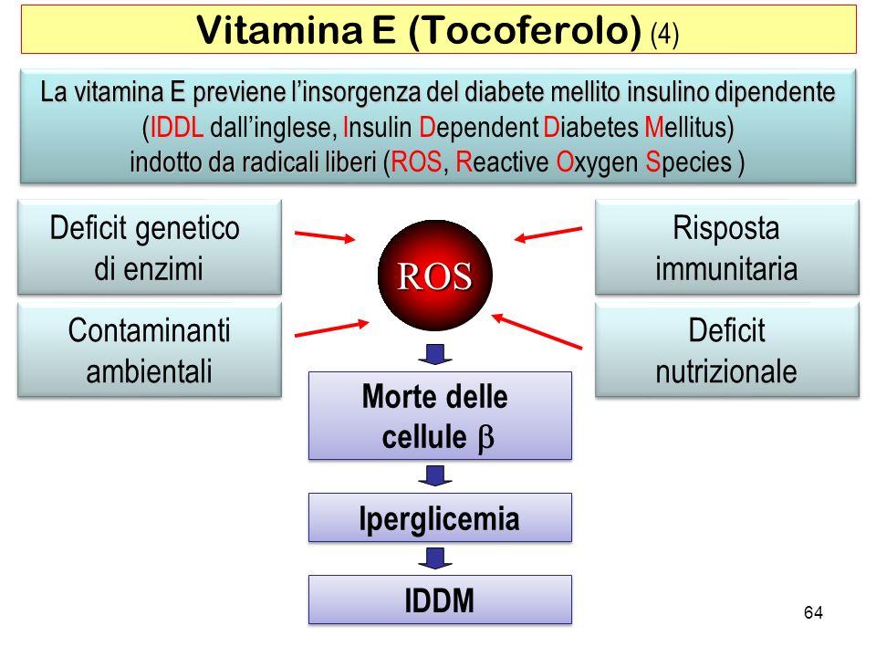 Vitamina E (Tocoferolo) (4)