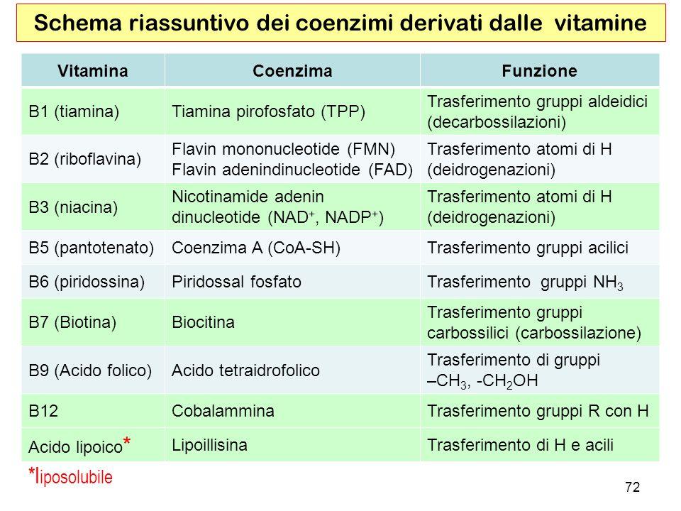 Schema riassuntivo dei coenzimi derivati dalle vitamine