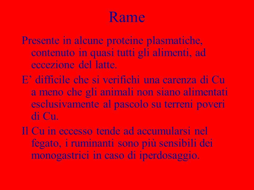 RamePresente in alcune proteine plasmatiche, contenuto in quasi tutti gli alimenti, ad eccezione del latte.