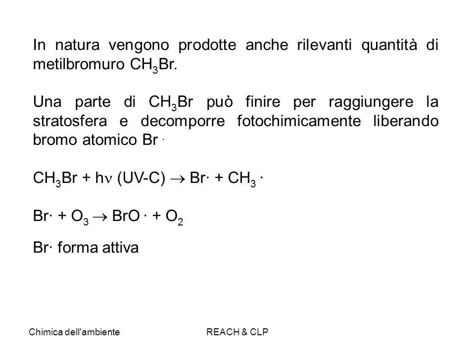 CH3Br + h (UV-C)  Br· + CH3 · Br· + O3  BrO · + O2 Br· forma attiva