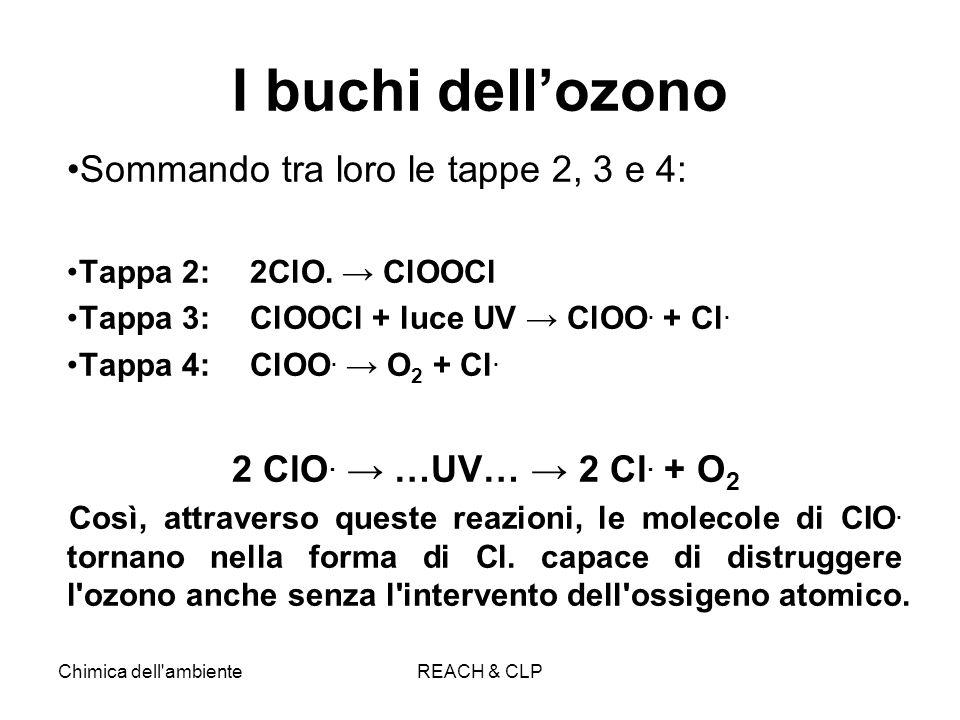 I buchi dell'ozono Sommando tra loro le tappe 2, 3 e 4: