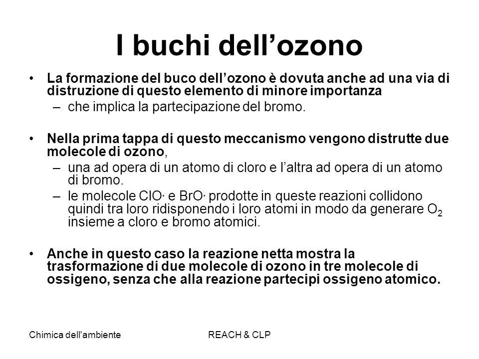 I buchi dell'ozono La formazione del buco dell'ozono è dovuta anche ad una via di distruzione di questo elemento di minore importanza.