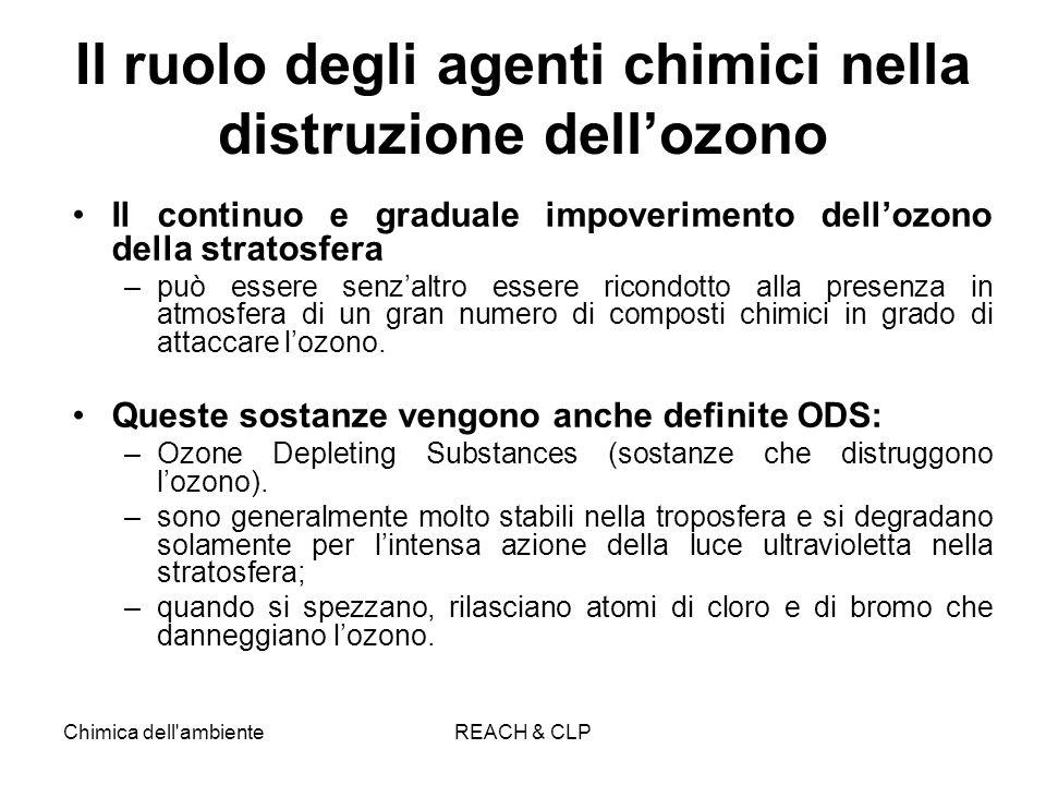 Il ruolo degli agenti chimici nella distruzione dell'ozono