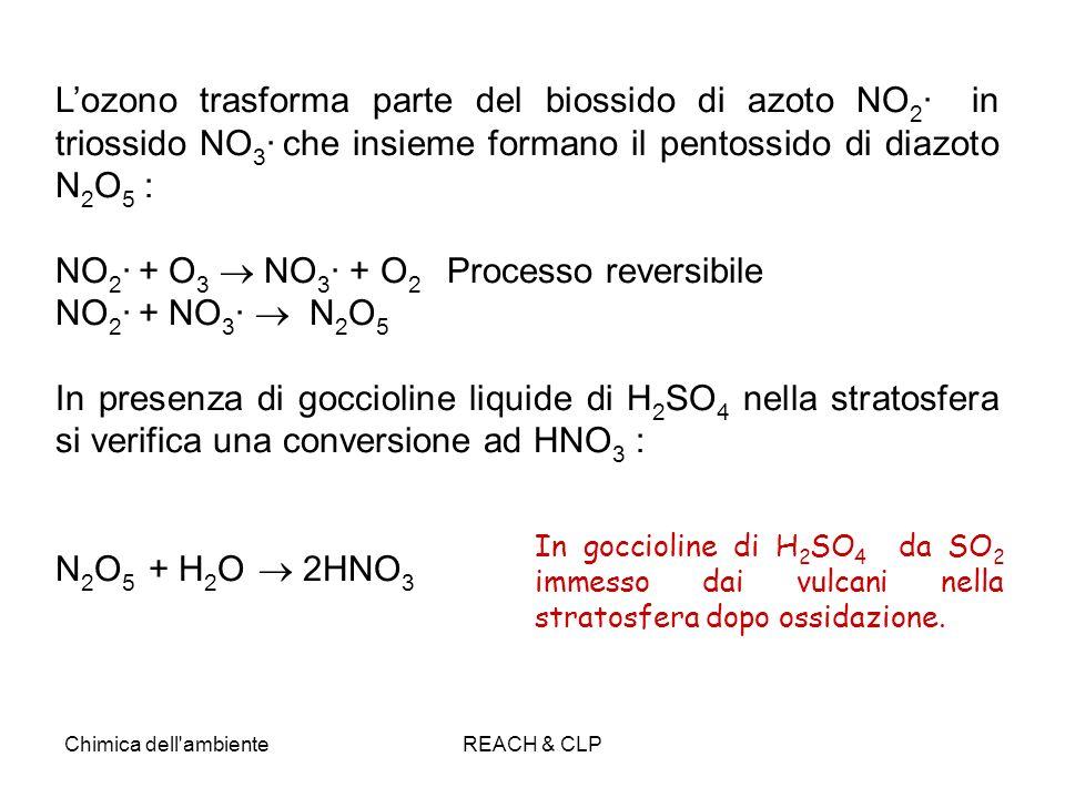 NO2· + O3  NO3· + O2 Processo reversibile NO2· + NO3·  N2O5