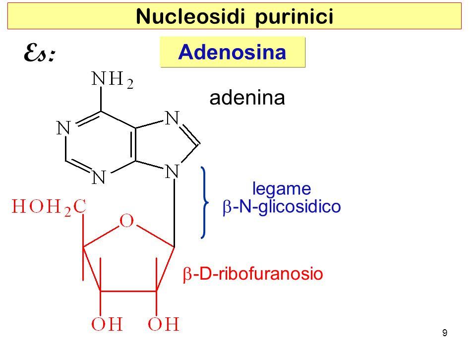Es: Nucleosidi purinici Adenosina adenina legame b-N-glicosidico