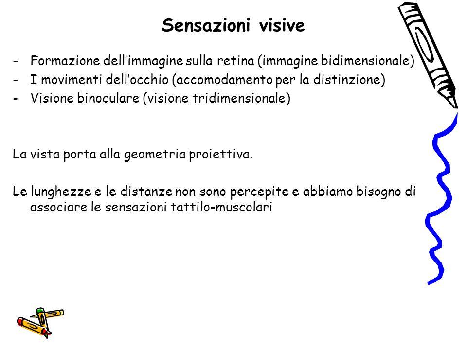 Sensazioni visive Formazione dell'immagine sulla retina (immagine bidimensionale) I movimenti dell'occhio (accomodamento per la distinzione)