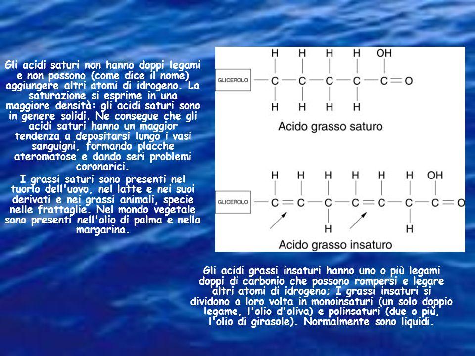 Gli acidi saturi non hanno doppi legami e non possono (come dice il nome) aggiungere altri atomi di idrogeno. La saturazione si esprime in una maggiore densità: gli acidi saturi sono in genere solidi. Ne consegue che gli acidi saturi hanno un maggior tendenza a depositarsi lungo i vasi sanguigni, formando placche ateromatose e dando seri problemi coronarici.