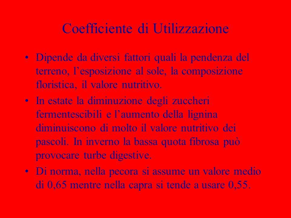 Coefficiente di Utilizzazione