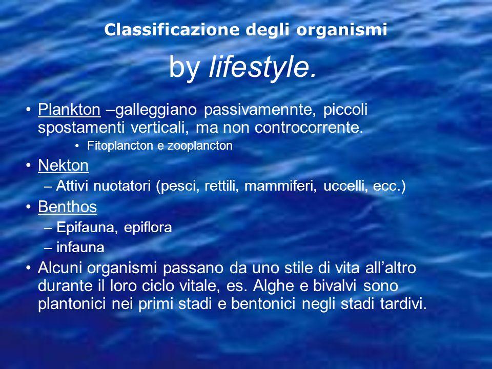 Classificazione degli organismi