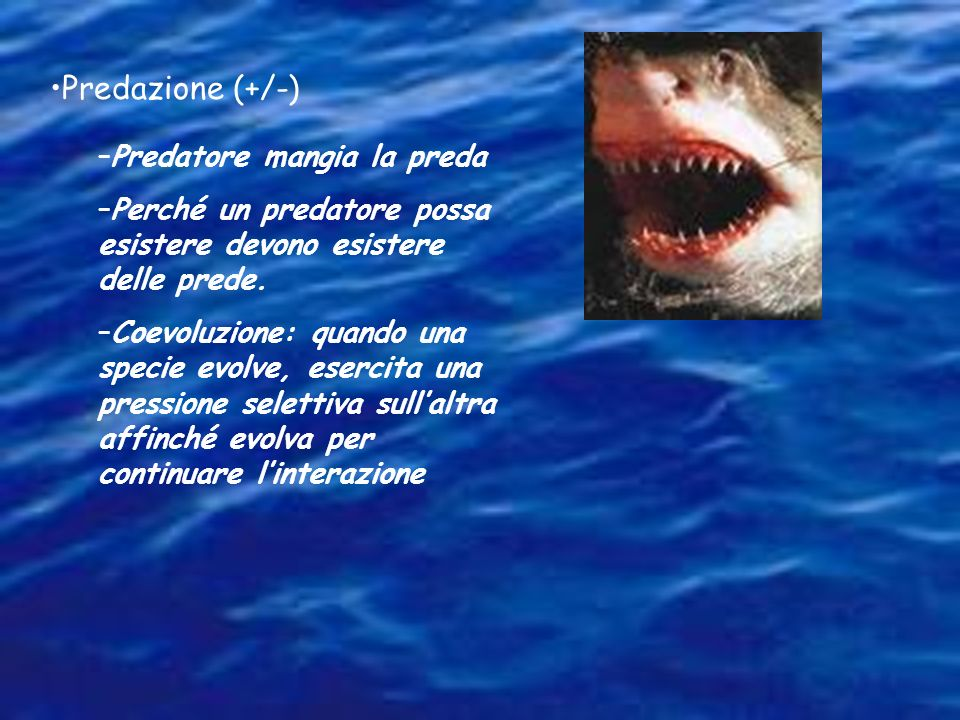 Predazione (+/-) Predatore mangia la preda