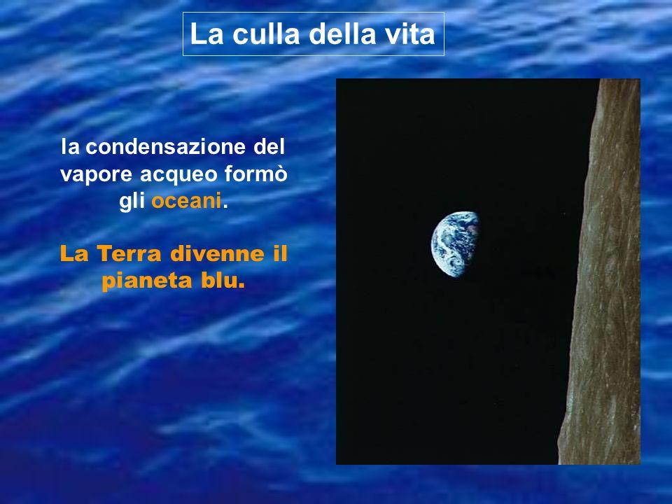 La culla della vita la condensazione del vapore acqueo formò gli oceani.