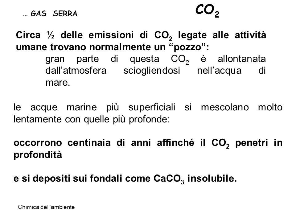 CO2 … GAS SERRA. Circa ½ delle emissioni di CO2 legate alle attività umane trovano normalmente un pozzo :